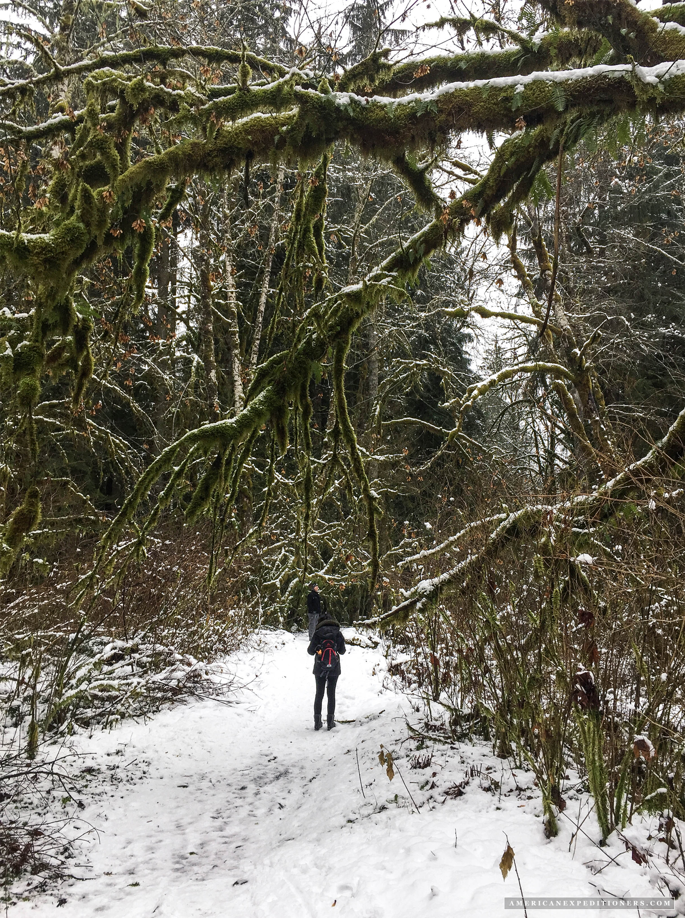 Winter Hike To The Old Robe Trail Tunnel American
